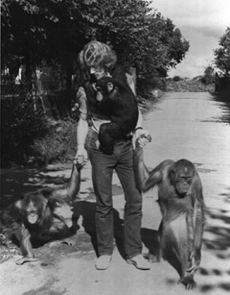 nigel mazlyn jones with apes